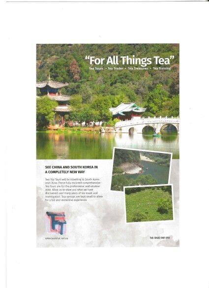 """Tea Total """"For All Things Tea"""""""
