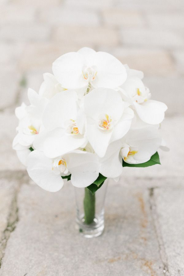 bouquet ideas for weddings 25 best ideas about white orchid bouquet on 2028
