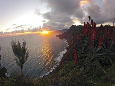 Avec ses 2000 km de sentiers (!), Madère est un véritable paradis pour randonneurs.