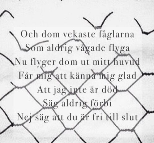 Fri till slut-Håkan Hellström
