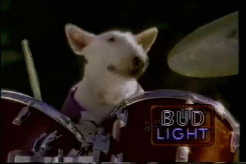 spuds! mckenzie! #dogs #beer #gifs