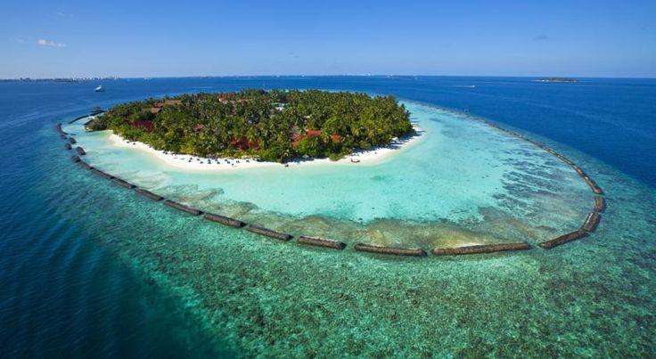 ⭐⭐⭐⭐ Kurumba Maldives Суперпредложение: Выгодное сочетание цена/качество на выбранные вами даты.  11.01.17 на 7 ночей. ✈ Авиаперелет: #maldives из Киева  Цена от 3 324 $ на 8 дней\7 ночей.  Питание: Завтрак. #скидки  Номер: Superior. Цена указана за 1-го при 2-х местном размещении В стоимоcть входит: авиаперелёт, проживание в отеле с указанным питанием, групповой трансфер а/п-отель-а/п, мед.страховка