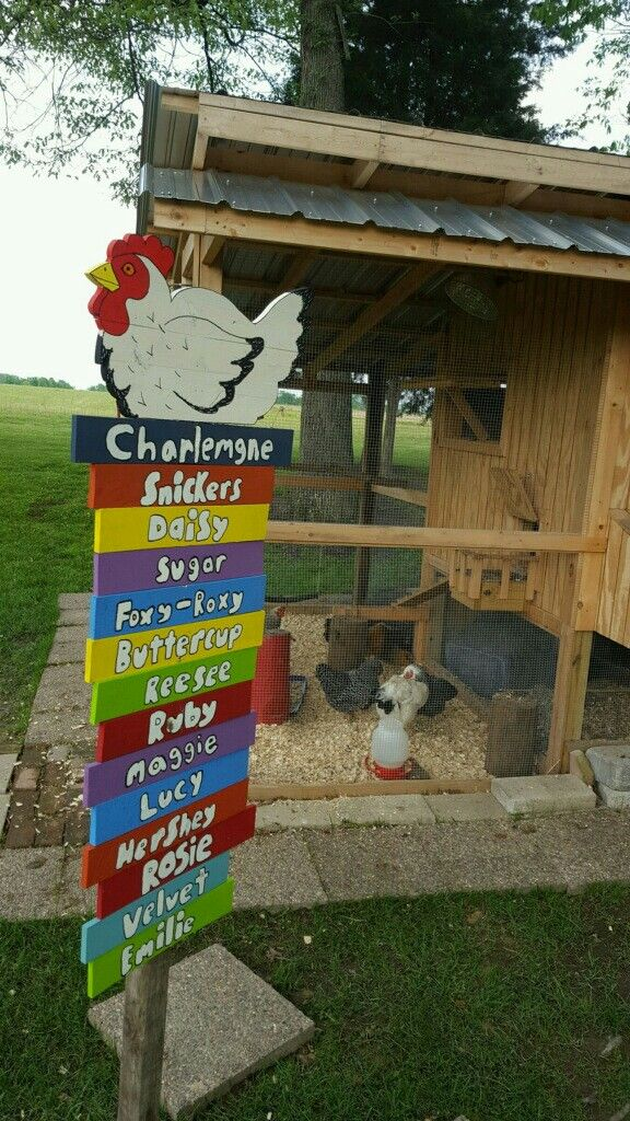 Our chickens...with all their names on the sign :}