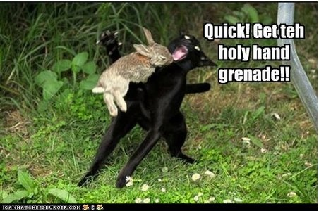 Quick get the holy hand grenade!