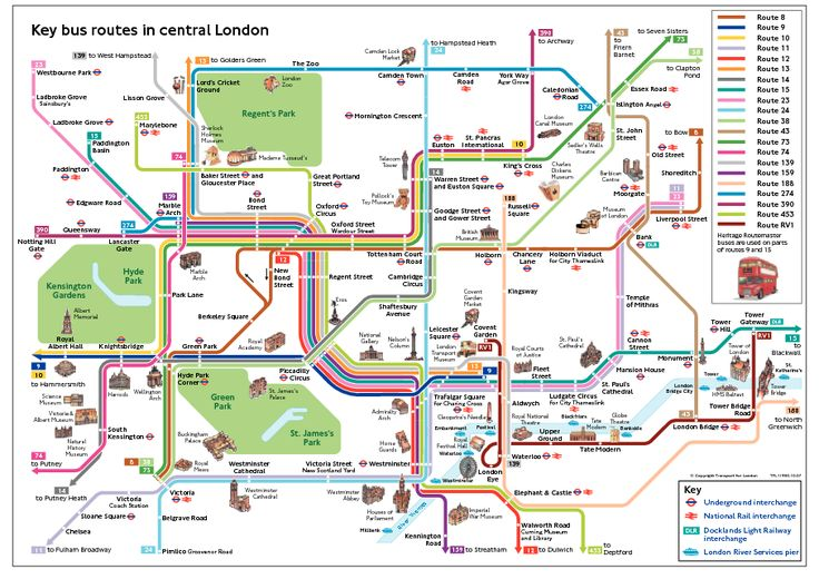 Central London Bus Map Showing Routes and Attractions.