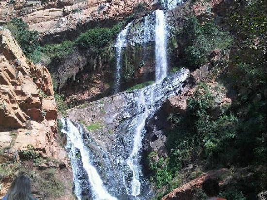 Groenkloof Nature Reserve. Pretoria