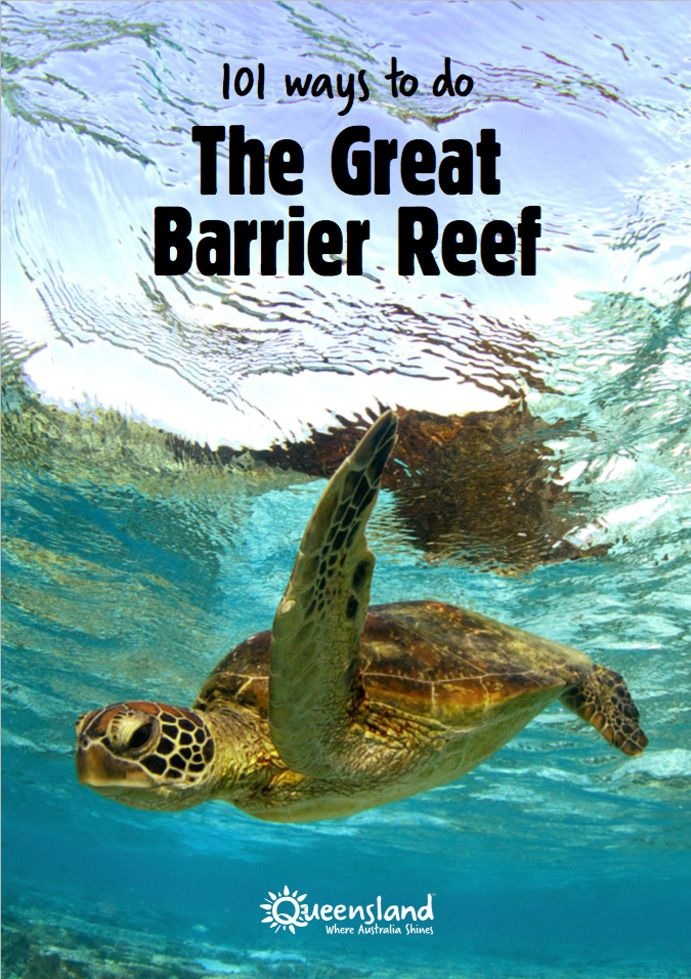 New ebook: 101 ways to do the Great Barrier Reef