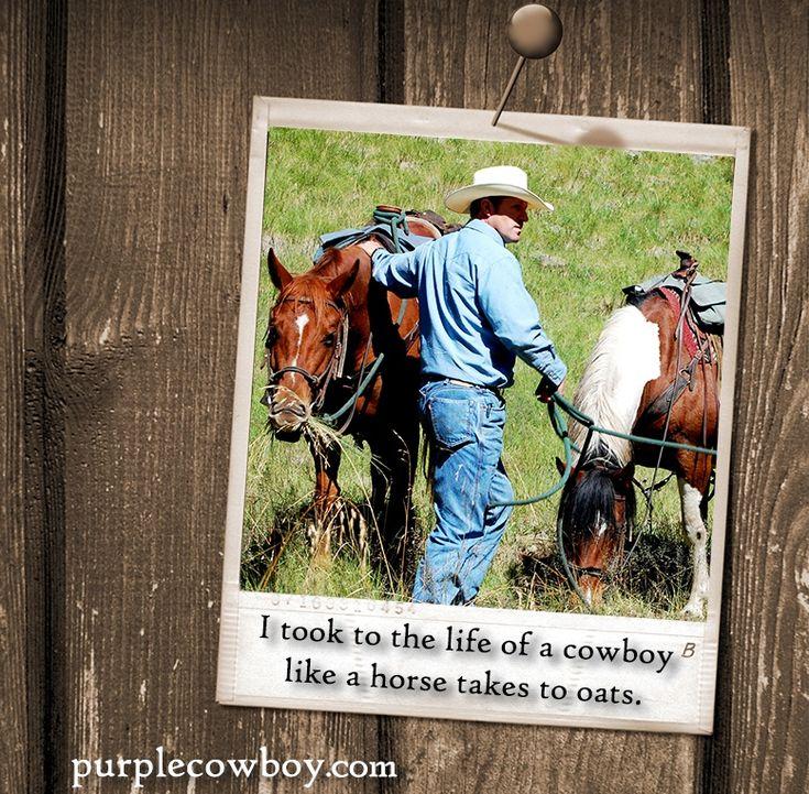 Find a bottle of Purple Cowboy wine near you