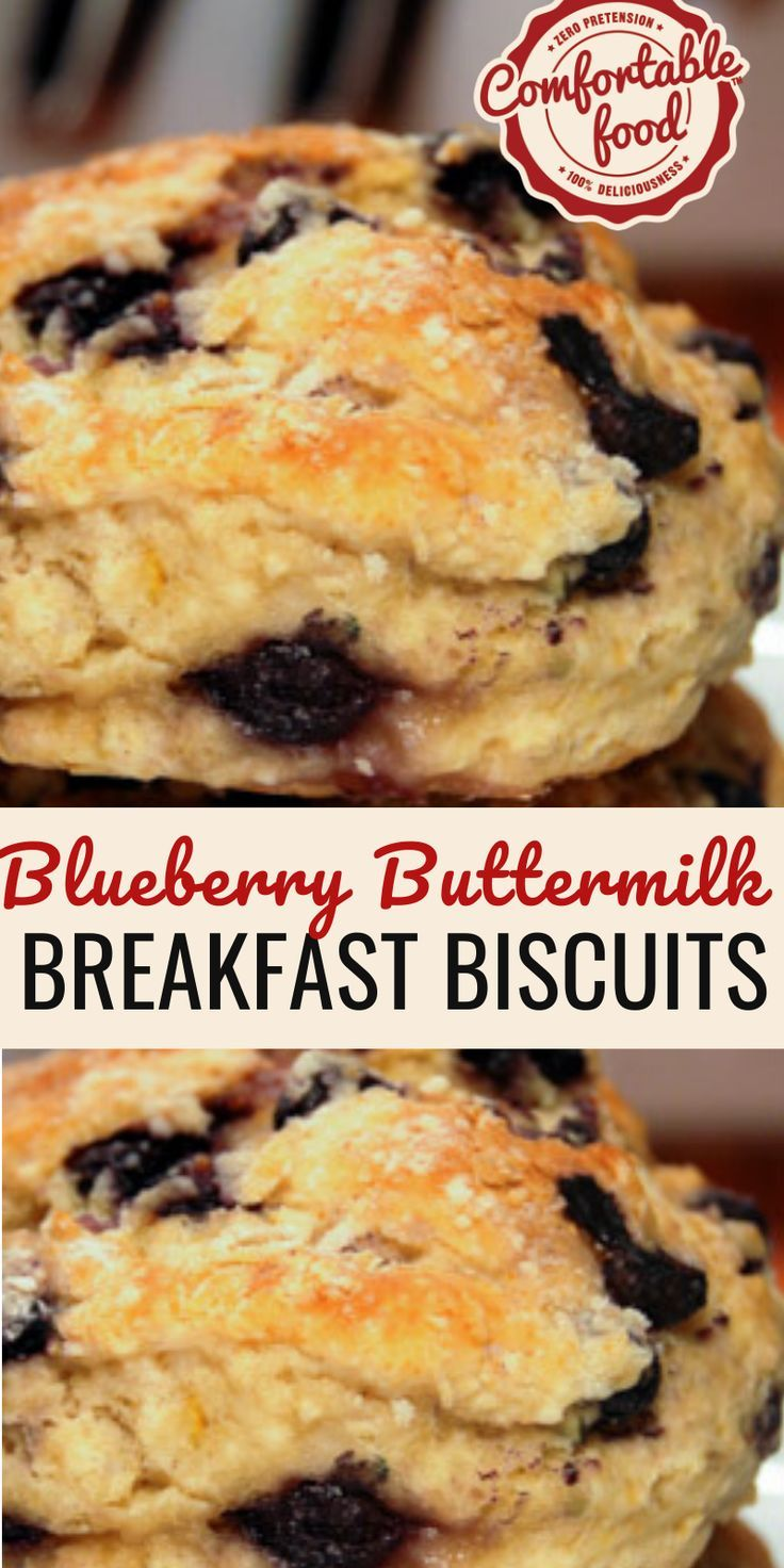 blueberry buttermilk breakfast biscuits recipe in 2020 breakfast biscuits biscuit recipe blueberry recipes pinterest