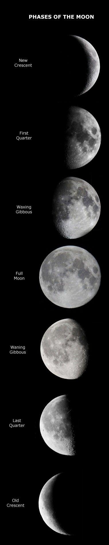 Lunar phases --- for inspiration. If I ever get my lunar ...