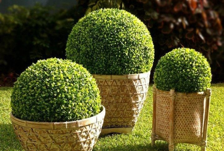 Popular Artificial Plant Ball-Buy Cheap Artificial Plant Ball lots ...