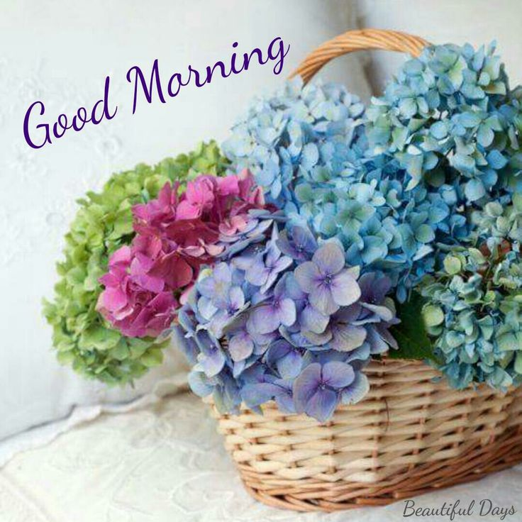 With morning pictures good quotes