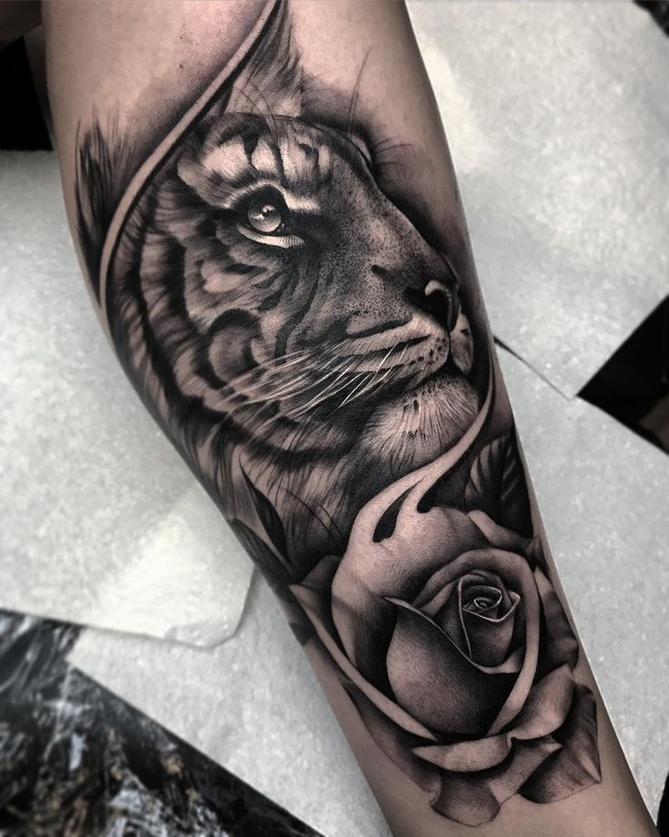 black and grey tiger and rose tattoo by @bobbalicious_tattoo
