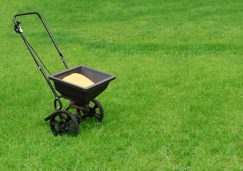 I provide lawn treatments in Ascot, Camberley, Crowthorne, Sunningdale, Virginia Water, Winkfield, Windlesham and Wokingham