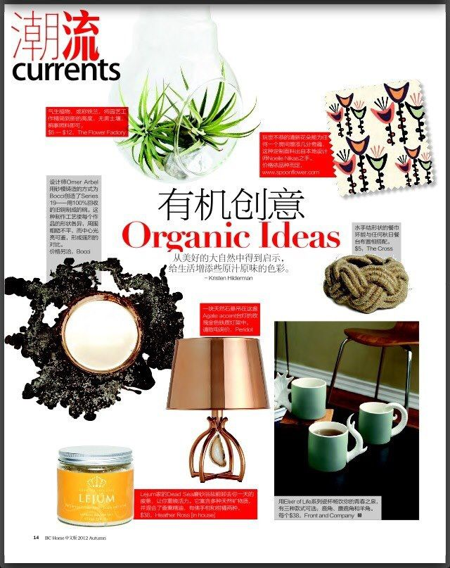 BC Home and Garden featuring my fabric.  ( Chinese Edition) www.noellenikas.com