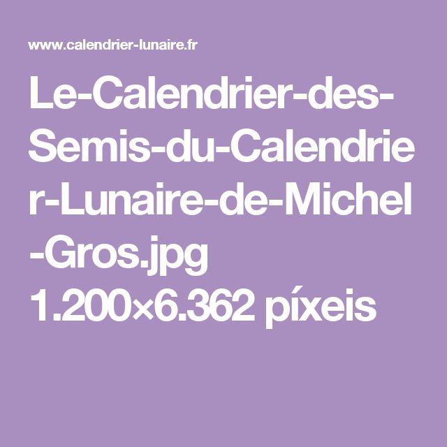 Le-Calendrier-des-Semis-du-Calendrier-Lunaire-de-Michel-Gros.jpg 1.200×6.362 píxeis