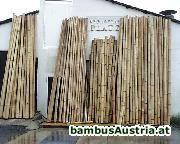 Bambusrohre Tischlerqualit�t  vorr�tig