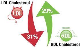 Cara Mengobati Kolesterol >> Untuk anda yang memiliki penyakit Kolesterol, segera atasi dengan menggunakan obat herbal yang tepat dan akurat, karena jika tidak penyakit kolesterol tinggi ini akan memicu penyakit berbahaya lain nya yaitu seperti penyakit jantung dan stroke.