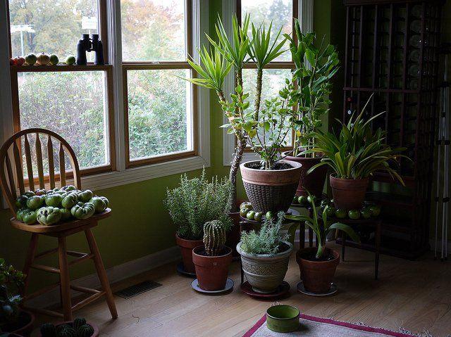 Quiz: qu'est-ce qui est plus pollué, l'air intérieur ou l'air extérieur? 10 fois sur 10, l'air intérieur de votre maison, bureau ou appartement va être pire que l'air extérieur. La pollution de l'air intérieur a été classée parmi le top 5 des plus grands risques pour la santé publique par l'EPA, et l'air intérieur stagnant …