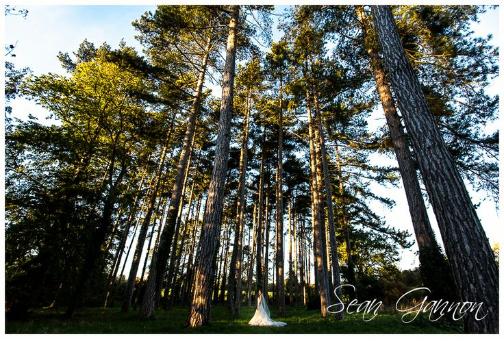 http://www.ehvenues.com/Fanhams-Hall-Hotel/weddings