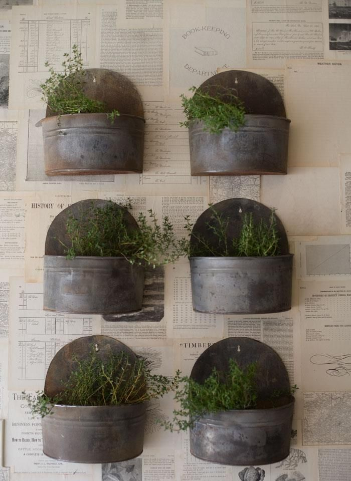 kitchen accent   - Christine-Flynn-Love-the-Design-Lakeville-Toronto-upcycled-vintage-modern-industrial: Idea, Kitchens Accent, Indoor Herbs, Design Shop, Metals Planters, Vintage Metals, Herbs Gardens, Planters Boxes, Wall Planters