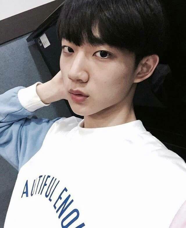 Ahn Hyung Seob PD 101