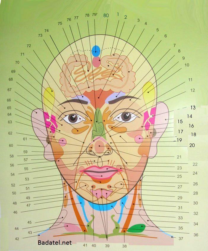 Kompletní mapa obličeje pro diagnostiku chorob