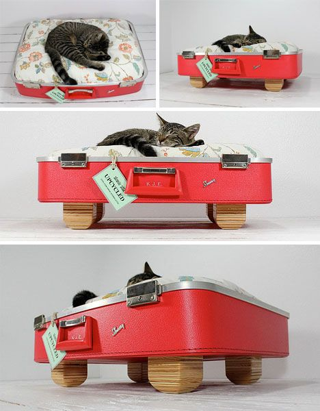 http://cdn.dornob.com/wp-content/uploads/2011/10/cat-bed-red-suitcase.jpg