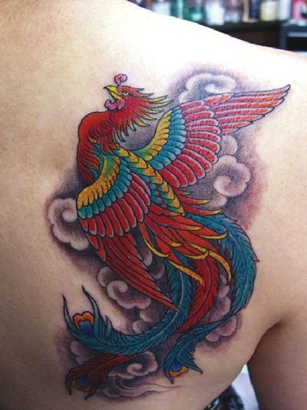Phoenix Tattoofinder: The 28 Best Red Phoenix Tattoo Images On Pinterest