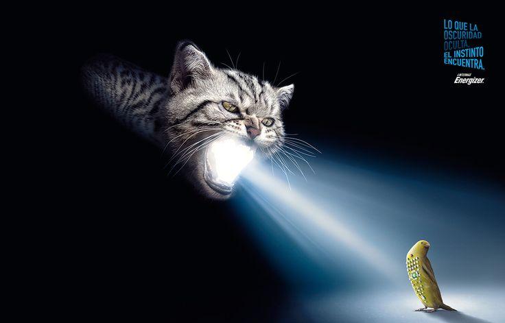 Gráficas Linternas Energizer