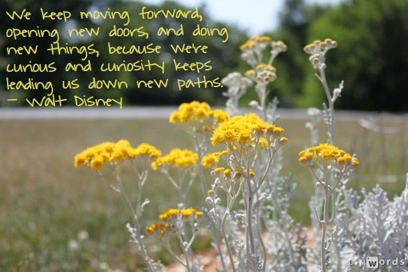 "Walt Disney ""keep moving forward"" quote from Meet the Robinsons. Words added on pinwords.com. Photo by @Katie Denta."