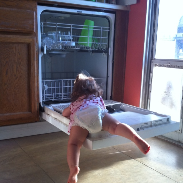 Child in dishwasher