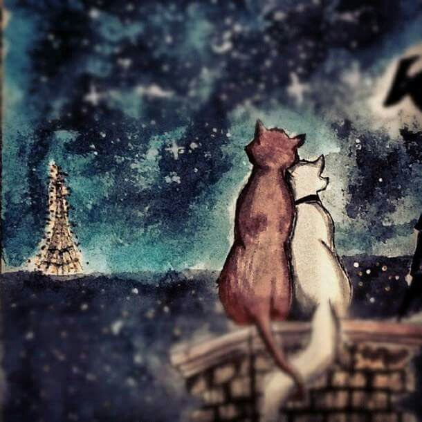 Cats in Paris (Raissa Alves)