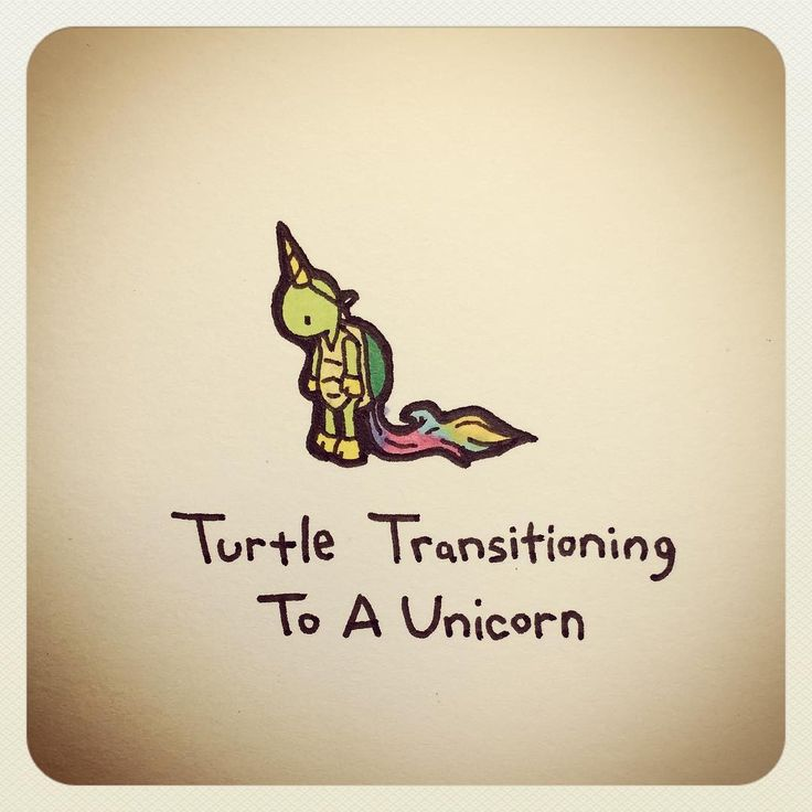 Turtle Transitioning To A Unicorn