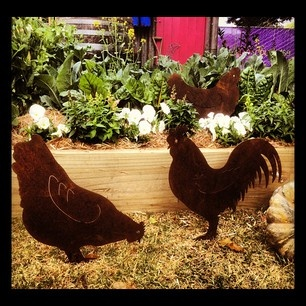 Set of 3 rusty tin chooks available from The Garden Tool Shop  www.gardentoolshop.com.au