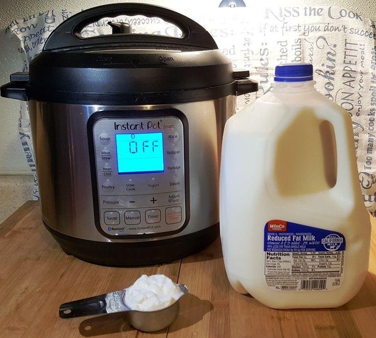 Instant Pot Greek Yogurt - This Old Gal