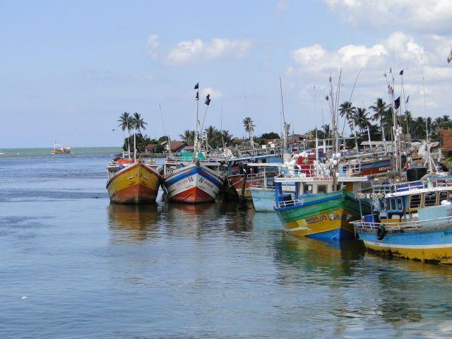 Im Hafen von Negombo
