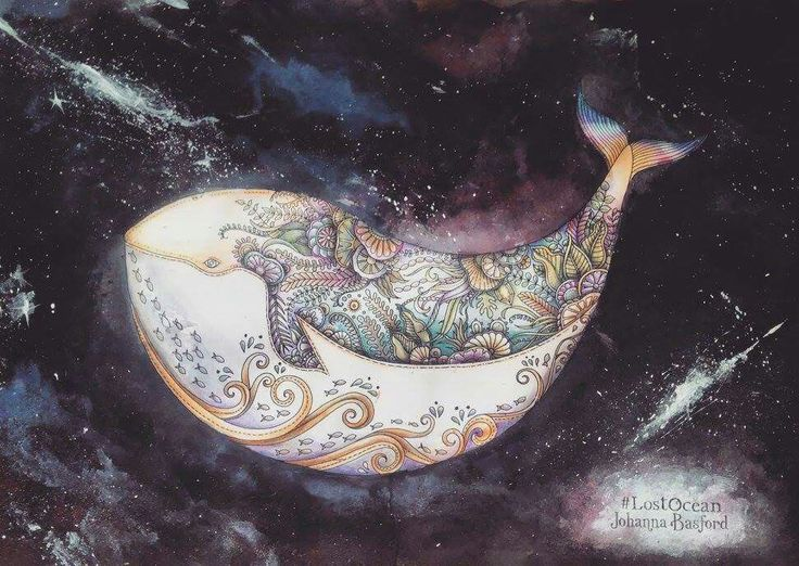 Winning Picture For Johannas Whale Competition By Oliwia Szymura