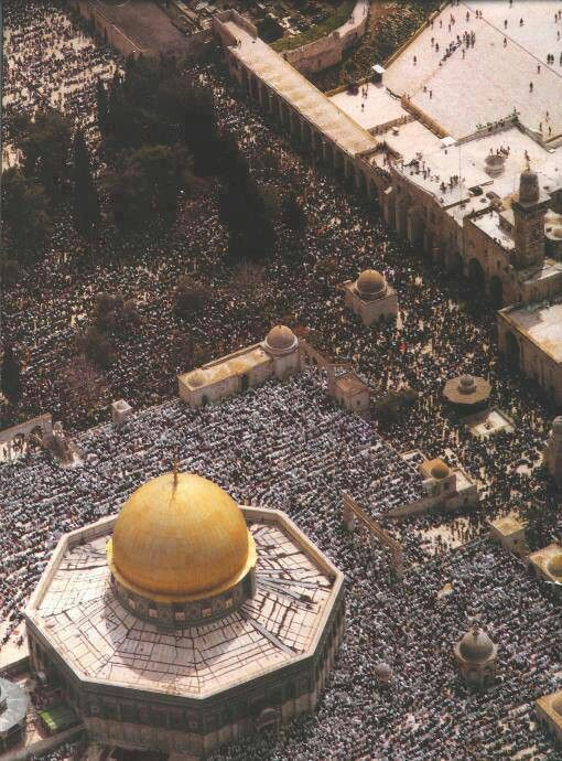 Prayers at dome of the rock, Palestine.