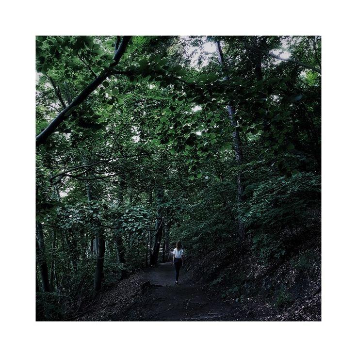#forest #gdynia #me #moreonmyinstagram #@rudylosos #gdynia