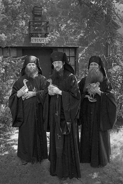 seriously. sooo many photos of Orthodox Monks with aminals!