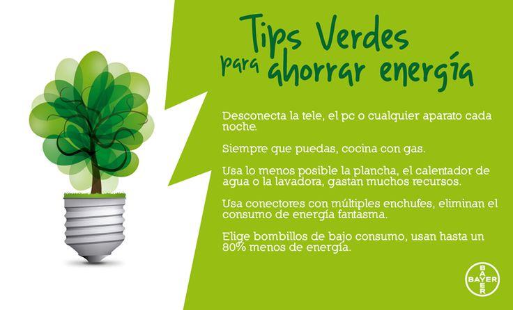 5 Tips Verdes para ahorrar energía | Tips, Search and Frases