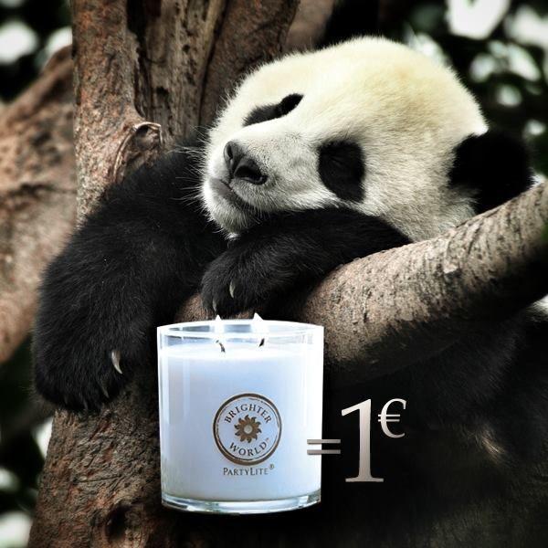 PartyLite stödjer WWF Earth Hour kampanjen Vi donerar 1 EUR till WWF från varje såld Brighter World produkt under perioden 15-31 mars. http://www.partylite.se/sv/produkter/tillbehoer/earth-hour.html