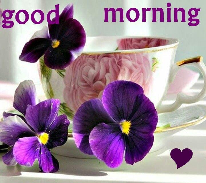 Good Morning Zedge : Best good morning images on pinterest