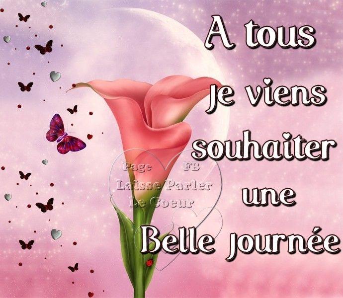 A tous je viens souhaiter une Belle Journée #bonnejournee papillons fleur matin