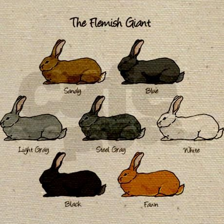 flemish giant rabbits   Bunny Gifts > Bunny Bags > Flemish Giant Rabbit Tote Bag