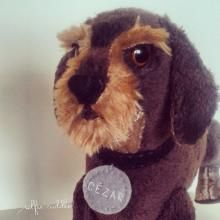 Wiredaired dachshund dog, handmade fabric soft toy of pet