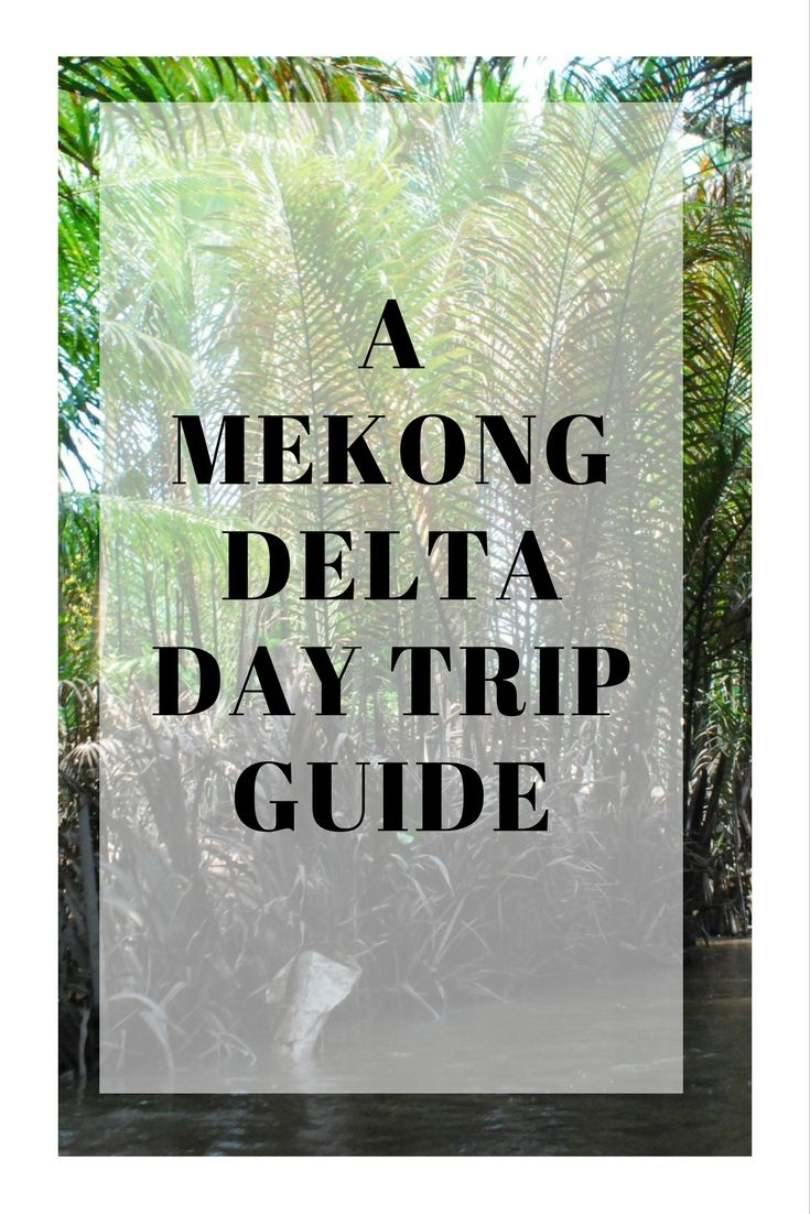 A peek into what a Mekong Delta Day Trip looks like with Youth Tourist Joint-Stock Company. All about where we went and what we experienced. via @thshegoesagain