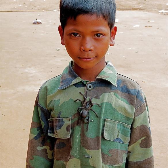 Edible spiders in Skuon, Cambodia