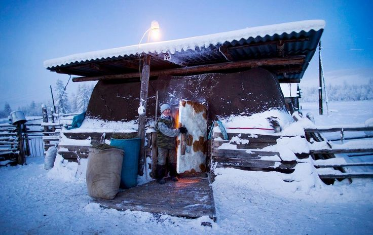 Farmer Nikolai Petrovich closes the door to his cows' heavily insulated barn after putting the herd to bed for the night in Oymyakon Siberia -65F